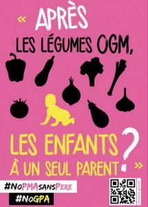 Les anti-PMA compare les enfants nés de FIV à des organismes génétiquement modifiés... (© La Manif pour Tous)