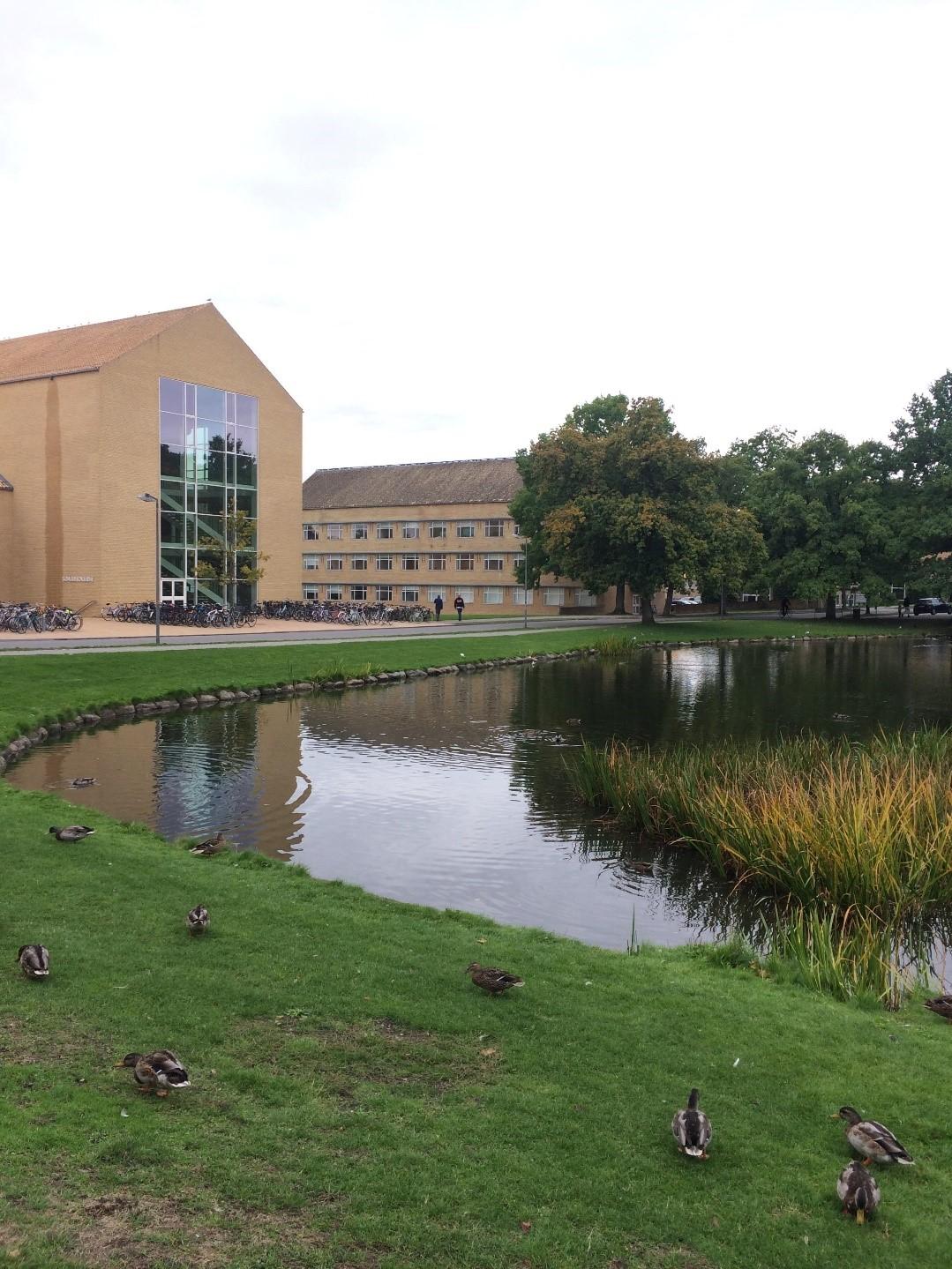 Parc de l'université d'Aarhus