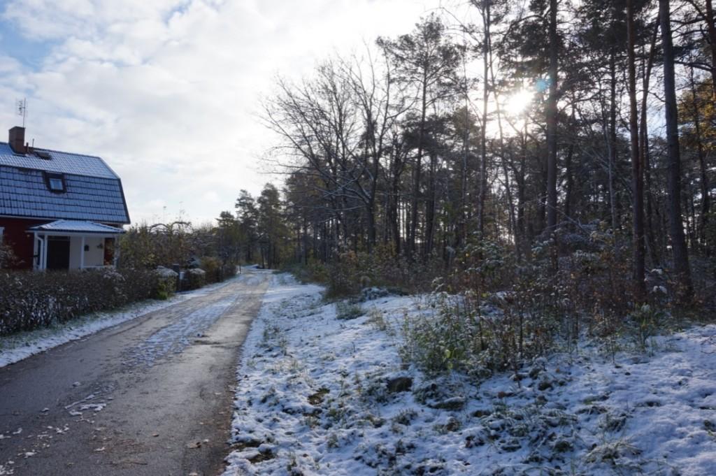 Journée enneigée à Uppsala