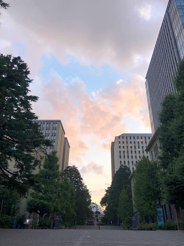 L'université de Tokyo